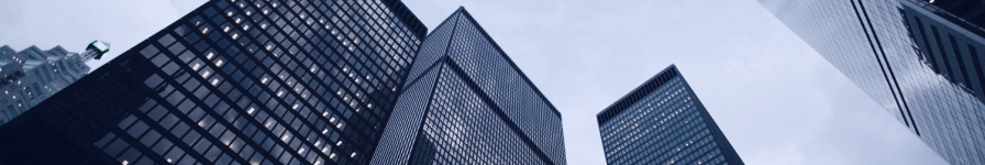 Financial Advisers Disciplinary CommitteeFinancial Advisers Disciplinary Committee - Home page